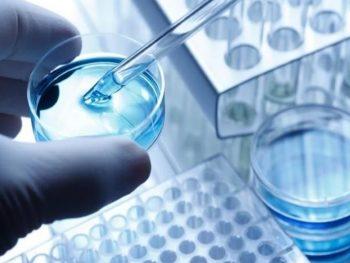 Ingeniería de Tejidos y Medicina Regenerativa